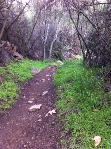 Bottom of Gridley Trail